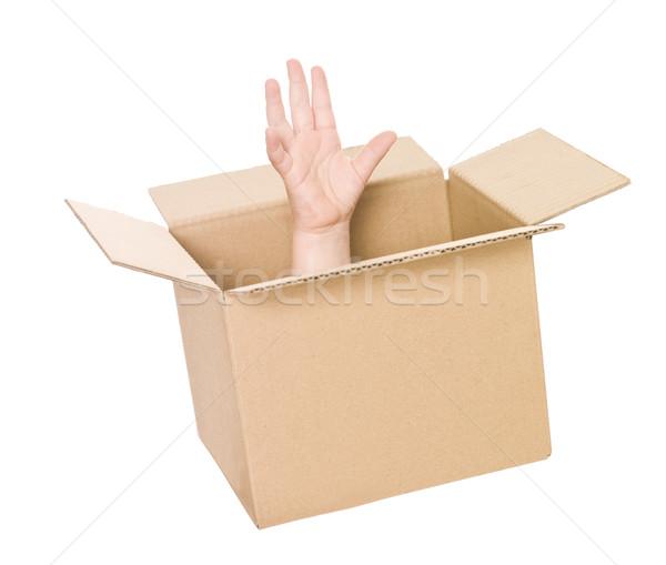 Kéz kartondoboz felfelé izolált fehér doboz Stock fotó © gemenacom