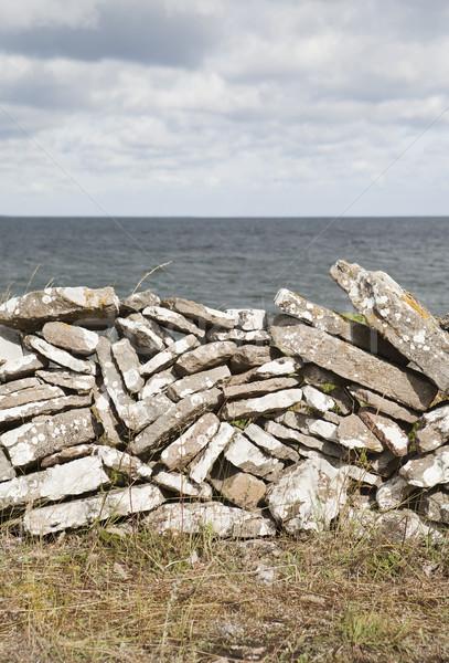 Taş duvar okyanus duvar deniz yeşil çiftlik Stok fotoğraf © gemenacom
