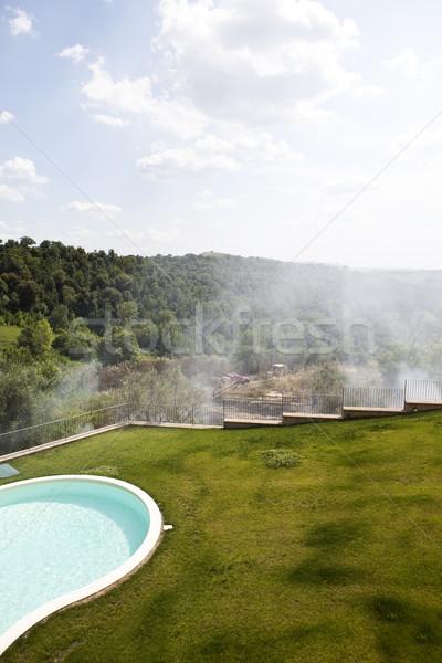 Grass fire Stock photo © gemenacom
