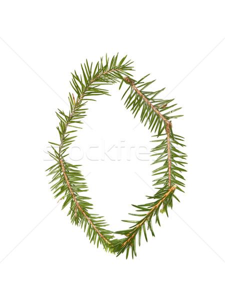 Lucfenyő o betű izolált fehér fa tél Stock fotó © gemenacom