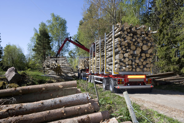 Loading Timber Stock photo © gemenacom