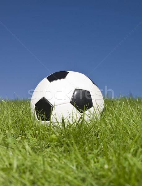 Blanc noir football herbe verte herbe football sport Photo stock © gemenacom