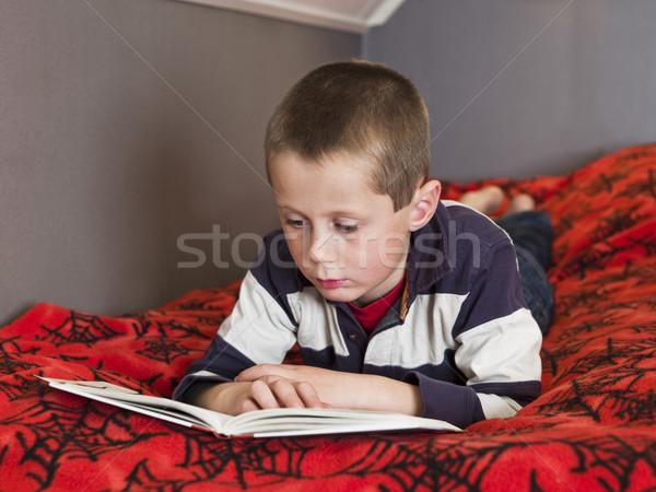 Young boy reding a book Stock photo © gemenacom