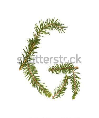 Spruce twigs forming the letter 'G' Stock photo © gemenacom