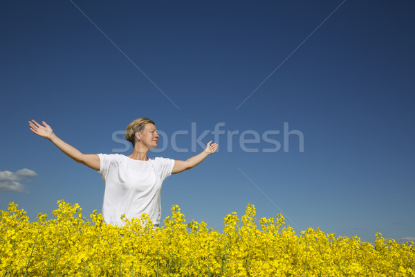 Zomer vrouw glimlachen vrouw armen verkrachting veld Stockfoto © gemenacom
