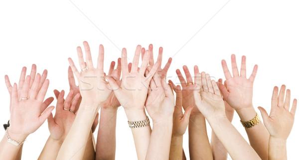 Human Hands Raised Stock photo © gemenacom