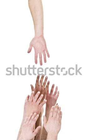 Foto stock: Mão · fora · ajudar · isolado · branco · grupo