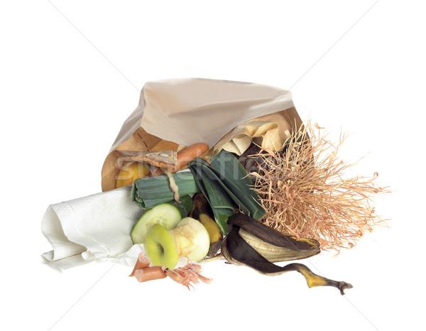 Szemét táska izolált fehér papír zöldségek Stock fotó © gemenacom
