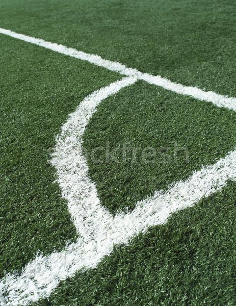 Soccer Field Stock photo © gemenacom