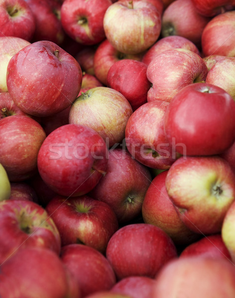 Full frame rouge pommes fruits Photo stock © gemenacom