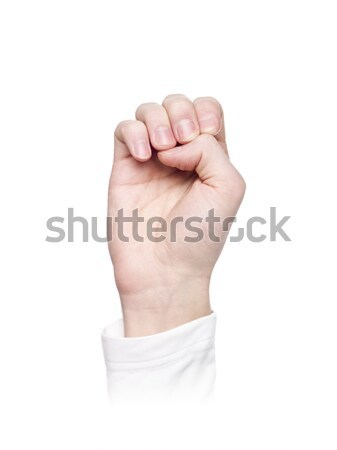 Linguagem gestual isolado branco multidão assinar Foto stock © gemenacom