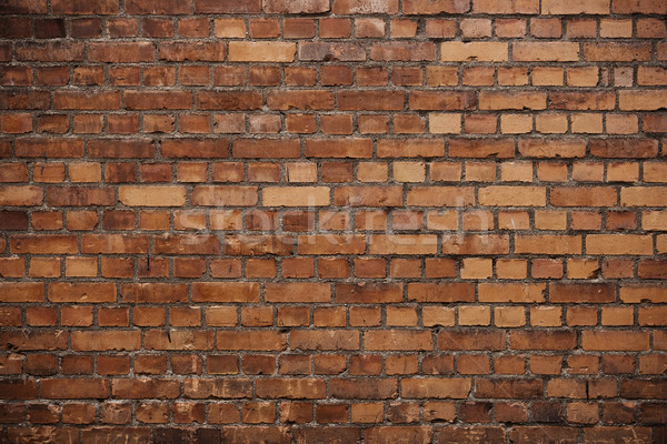 Brickwall Stock photo © gemenacom