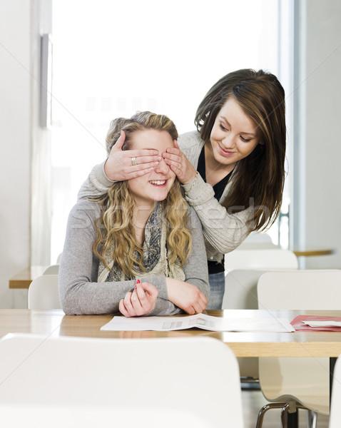 two girls playing peek a boo Stock photo © gemenacom