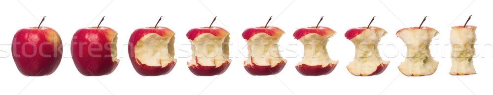 Red apples in progress towards white background Stock photo © gemenacom
