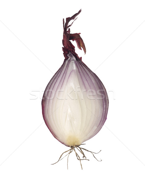 Red Onion Stock photo © gemenacom