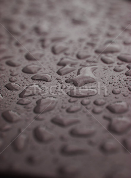 Full Frame of Water Drops on grey background Stock photo © gemenacom