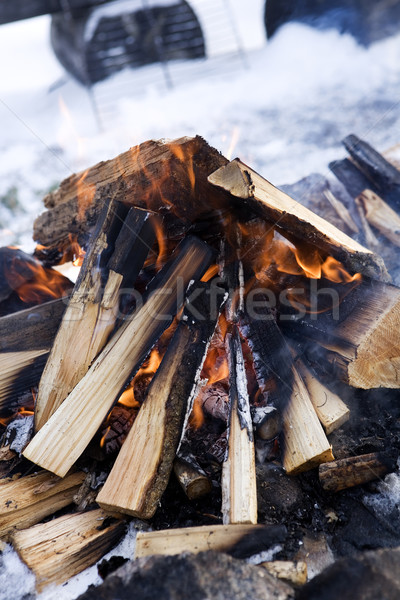 Stock fotó: Tábortűz · szelektív · fókusz · tél · fa · fa · erdő