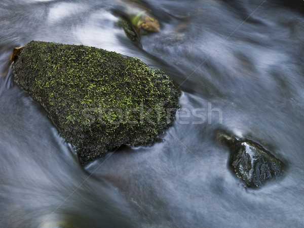Stone in a pitch shot with long exposure time Stock photo © gemenacom