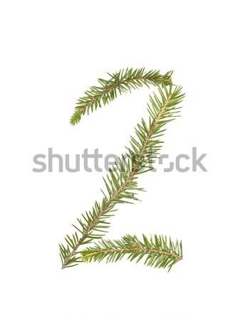 Ladin yalıtılmış beyaz ağaç kış Stok fotoğraf © gemenacom