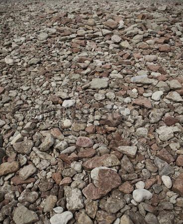 Wiele kamienie rock ogród kamień biały Zdjęcia stock © gemenacom