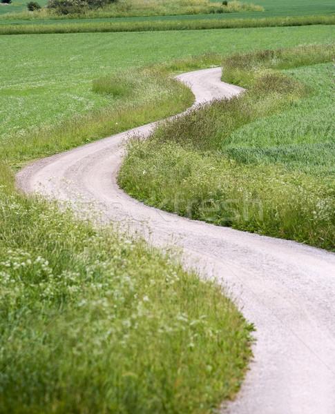 Onverharde weg zomertijd zomer groene velden Zweden Stockfoto © gemenacom