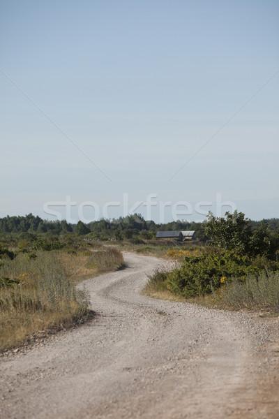 Dirt road Stock photo © gemenacom
