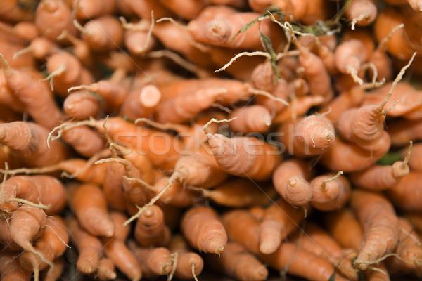 Cenouras quadro completo comida planta cenoura vegetal Foto stock © gemenacom