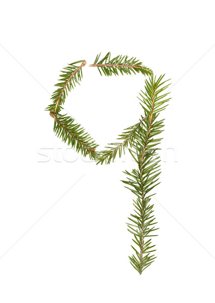 Fichte Zahl isoliert weiß Baum Winter Stock foto © gemenacom