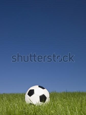 Feketefehér futball zöld fű fű futball sport Stock fotó © gemenacom