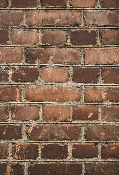 Worn brick wall Stock photo © gemenacom