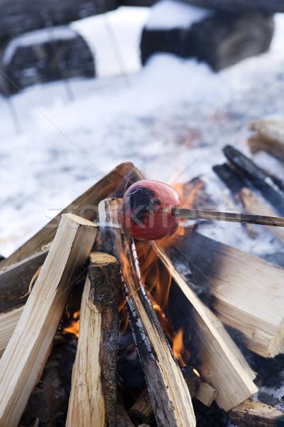 Campfire Stock photo © gemenacom