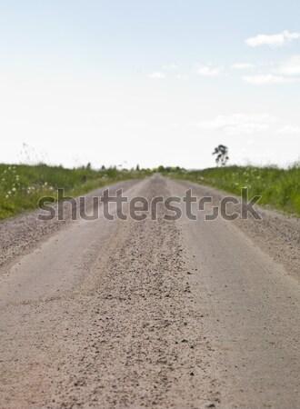 Onverharde weg zomertijd bloem landschap veld groene Stockfoto © gemenacom