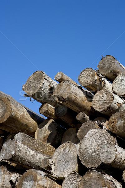 Timber Stock photo © gemenacom