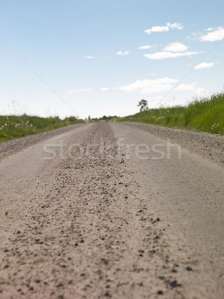 Chemin de terre été fleur paysage domaine vert Photo stock © gemenacom