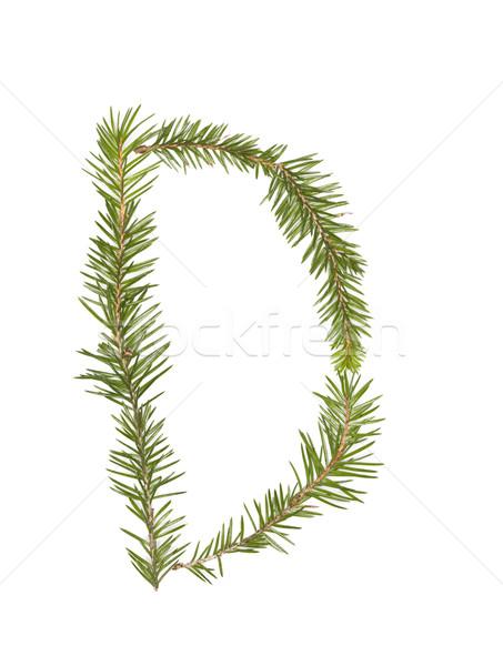 Wystroić litera d odizolowany biały drzewo zimą Zdjęcia stock © gemenacom