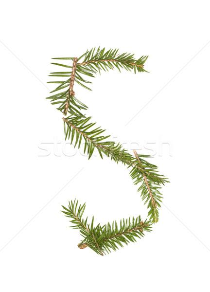 Ladin mektup yalıtılmış beyaz ağaç kış Stok fotoğraf © gemenacom