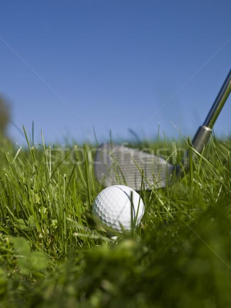 мяч для гольфа гольф клуба зеленый трава спорт Сток-фото © gemenacom