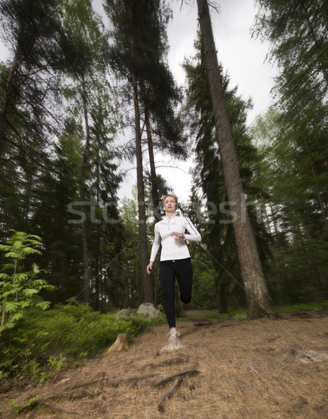 Woman running cross-country Stock photo © gemenacom