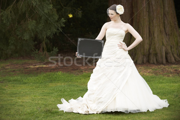 Photo stock: Mariée · bord · joli · robe · de · mariée · espace
