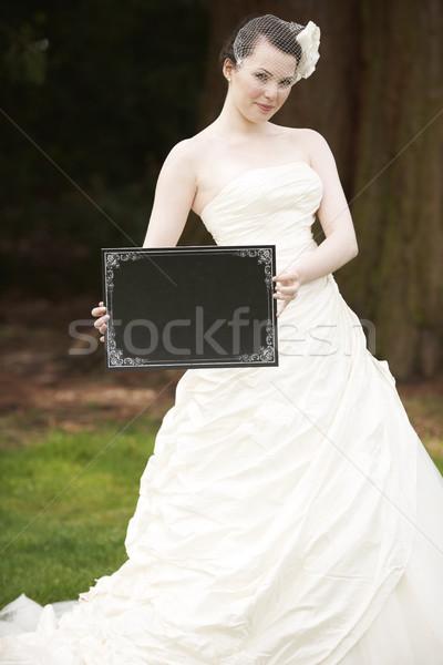 Mariée bord joli robe de mariée visage Photo stock © gemphoto