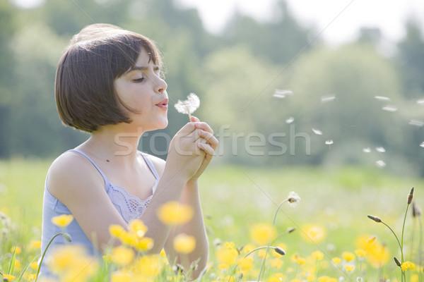 child blowing dandelion2956 Stock photo © gemphoto