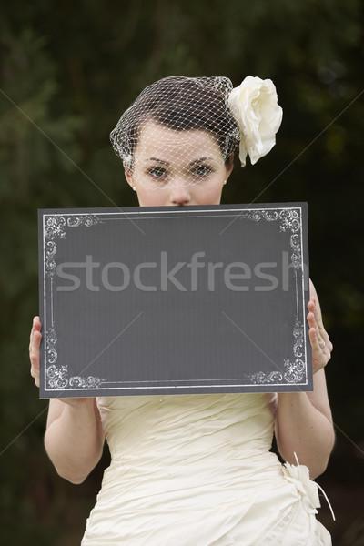 Mariée bord joli robe de mariée espace Photo stock © gemphoto
