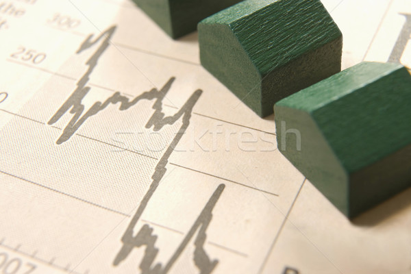 graph with houses  Stock photo © gemphoto