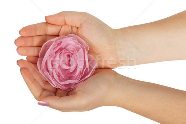 Steeg vrouwelijke handen geïsoleerd witte hand Stockfoto © GeniusKp