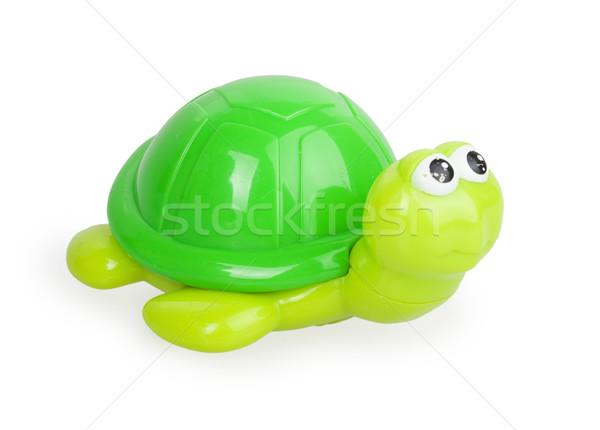 Сток-фото: игрушку · зеленый · черепахи · изолированный · белый · воды