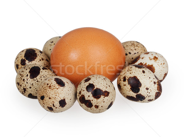 one egg and quail eggs Stock photo © GeniusKp