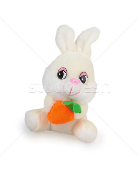 Beyaz peluş tavşan havuç yalıtılmış gülümseme Stok fotoğraf © GeniusKp
