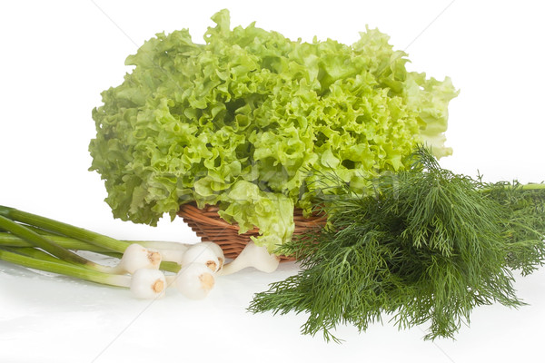 Young garlic, lettuce and dill isolated on white background Stock photo © GeniusKp