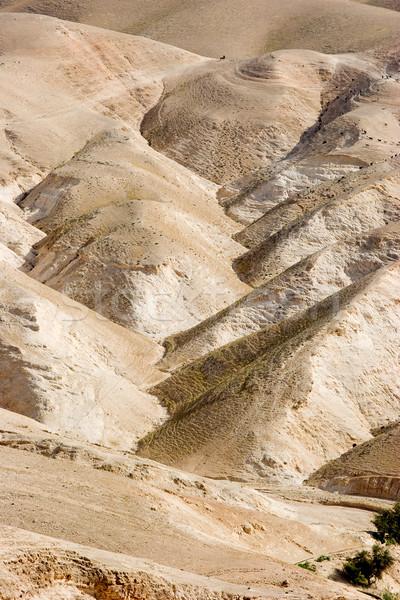 Deserto montanha Israel paisagem pedra religião Foto stock © georgemuresan