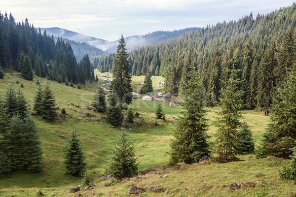 Montagne vallée forêt ciel bois Photo stock © georgemuresan